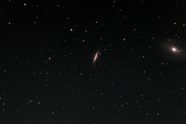 M82 and M81