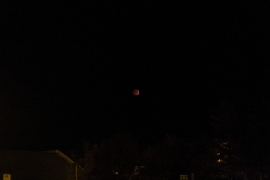 October 2014 lunar eclipse